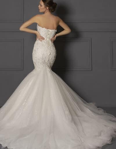 Phoenix DC053 gown